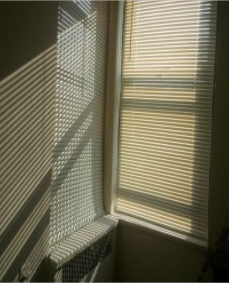 vertical blind memiliki pengaturan cahaya alami